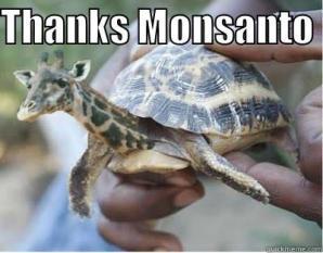 Thanks Monsanto